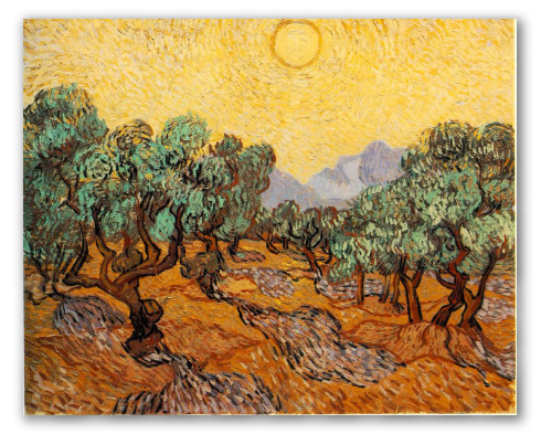 Olive Trees with yelow sky